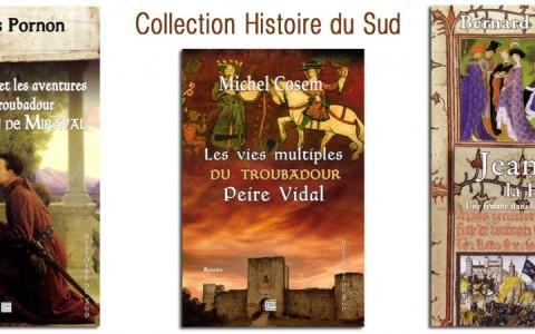 Les livres de la collection Histoire du sud
